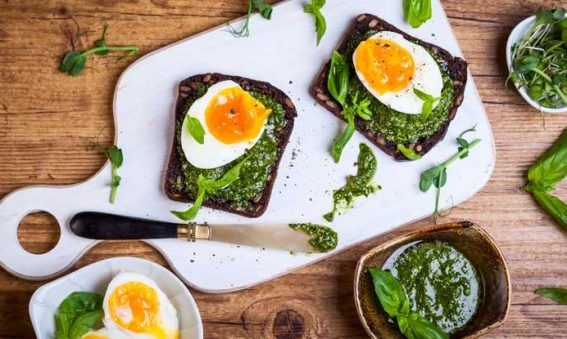 Protein Rich Breakfast and Weight Loss
